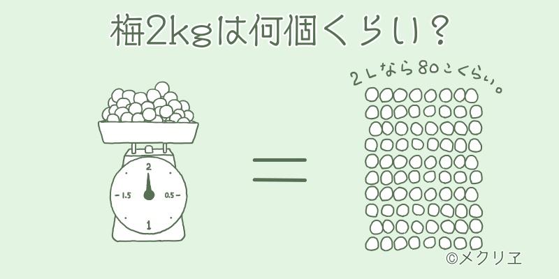 梅のサイズと重さの目安。梅2kgは何個くらい?